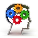 Cog Med Working Memory Training
